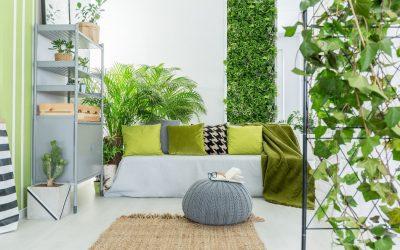Guide du mur végétal pour la maison