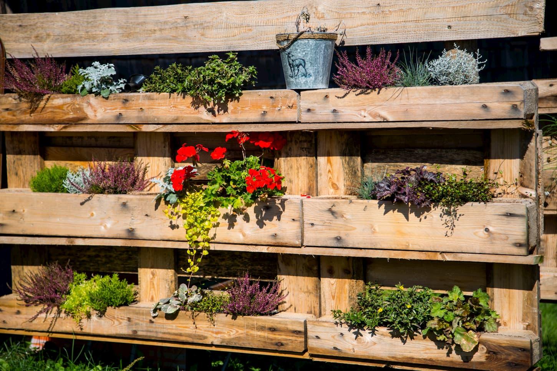 Le jardin vertical, une solution pour les petits extérieurs