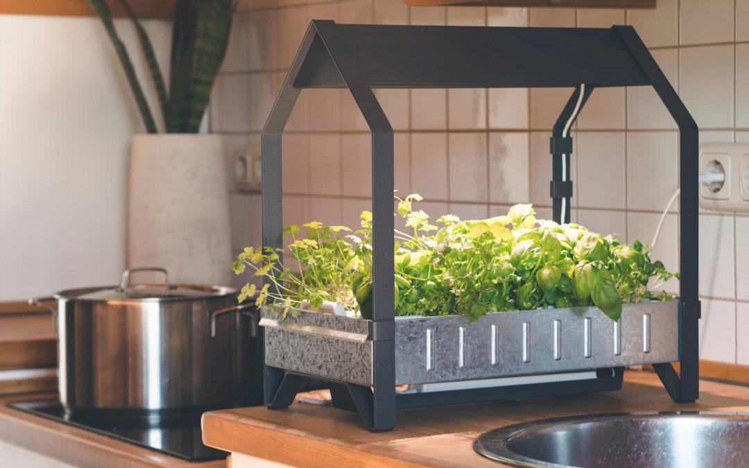 Quels sont les meilleurs systèmes hydroponiques maison ?