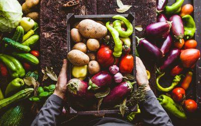 L'apprentissage du jardinage bio : ce qu'il faut savoir
