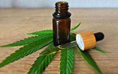 Comment acheter du cannabis thérapeutique ?
